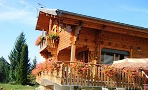 Chalet Calluna Exterior in Summer
